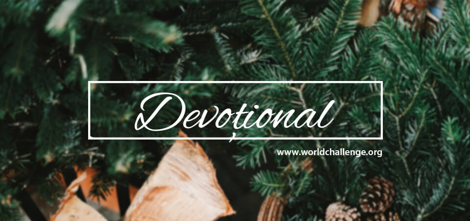 2018 Iarna Devotional header