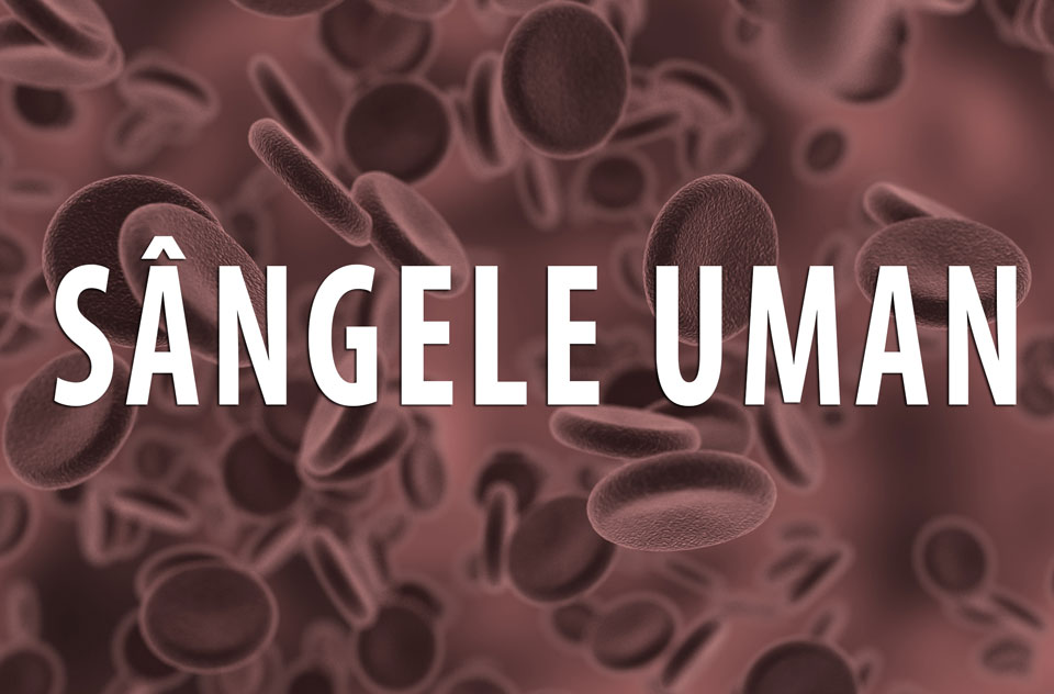sange celule
